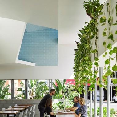 可渗水绿色商店  Cavill Architects + Jasper Brown2335.jpg