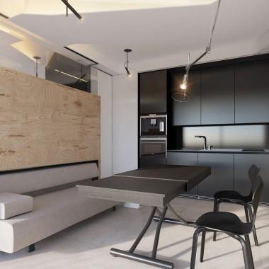 26m² 摩纳哥 Monaco Studio 工作室 - Vlad Mishin5120.jpg